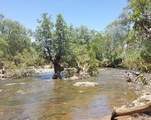 Kimberley hotel halls creek for Caroline springs swimming pool